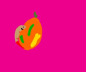 shrimp hugging a mango