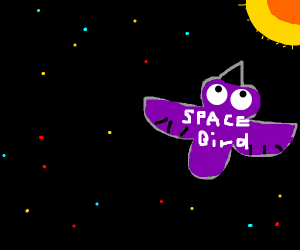 Bird crashes spaceship into the sun
