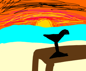 silhouette of a tropical drink at sunset