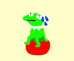 A concerned frog on a tomato