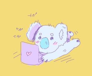 Cute Koala typing