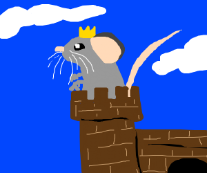 Rat in a castle