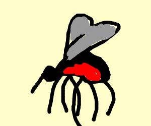 Pet Mosquito