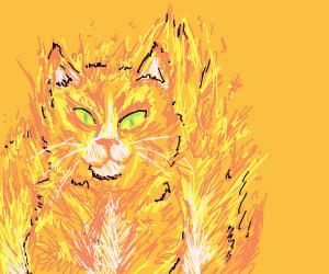 Fiery Catto