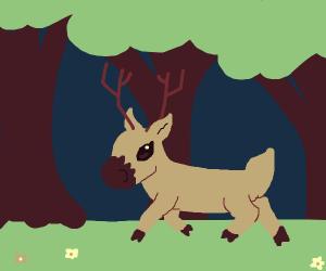 Deer wandering through a forest