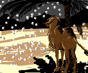 Camel in a Hailstorm