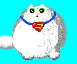 white supercat is fat