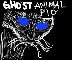 Ghost animal PIO
