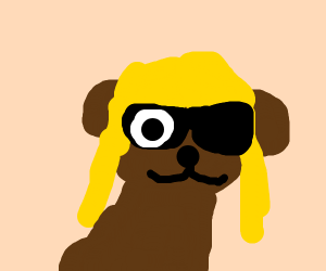 A dog with a wig and sunglasses, also an eye