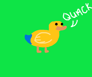 Cute duck with blue tail