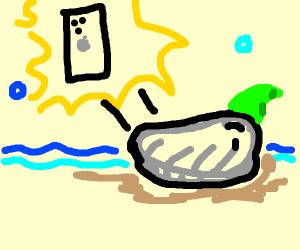 Chowder finds a phone
