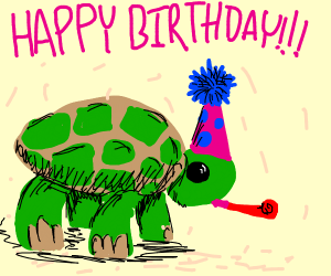 A birthday party for a turtle