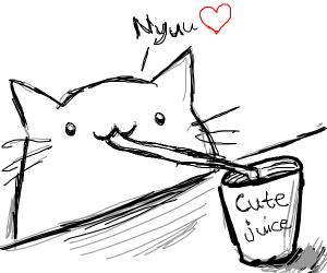 cat drinks cute juice