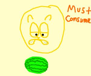 Garfield absorbs a watermelon