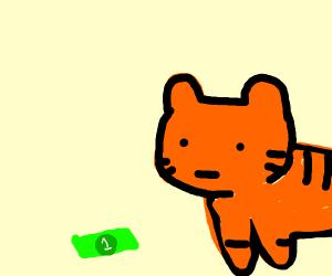 tiger had onli 1 dolar
