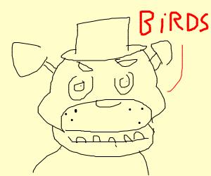 freddy talking about a bird