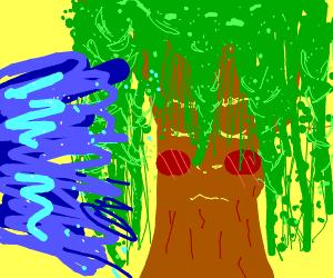 Watering a blushing tree