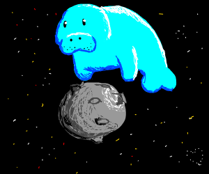 Manatee Jumping over the Moon