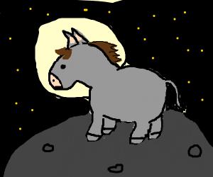 Mule Astronaut