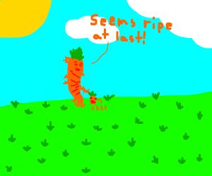 cannibal carrot