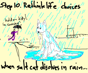 Step 9: Keep the salt cat as a pet.