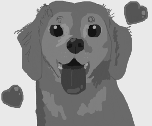 dog in grey-scale colors