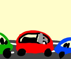 Hippo in a traffic