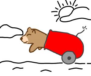 bear cannon