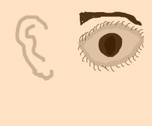 ear + eye