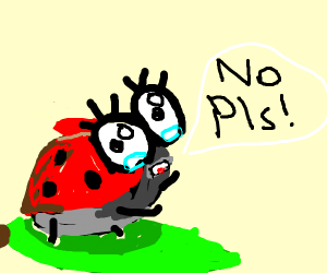 a bug saying no pls with terror in it's eyes