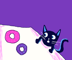 blue cat looks at donuts
