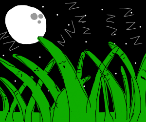 sleeping grass