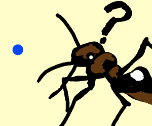 Ant confused by blue dot