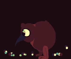 Kiwi(Bird)