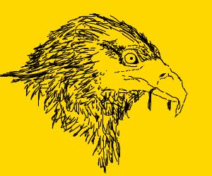 Hawk Ate It's Prey