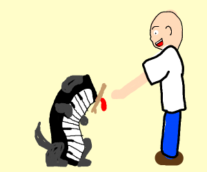 piano playing fetch with man
