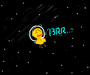duck is cold in space