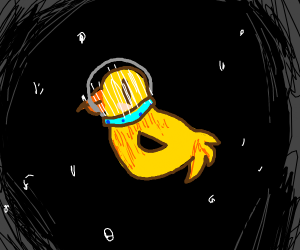 Duck in outer space