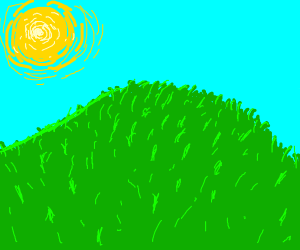 Beautiful grassy hill