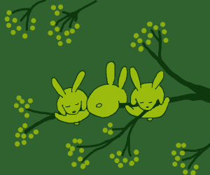Bunnies sleeping on a tree branch
