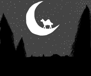 camel on the moon