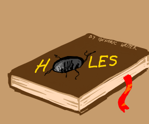 A book named Holes