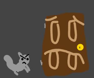 Squirrel intimidating a door