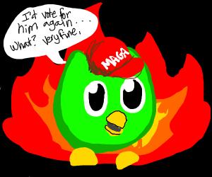 Duolingo bird is fascist scum now