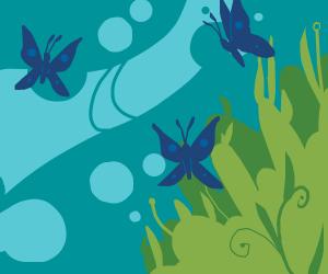 Butterflies in the sea
