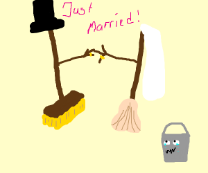 Broom and mop get married