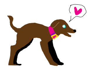 A lovely brown pet dog