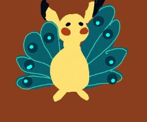 Peacockchu