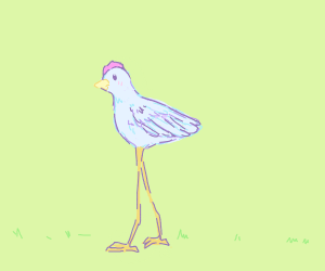 VERY tall chicken