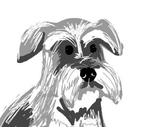 Draw your pet(s) :)